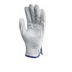 gant maîtrise